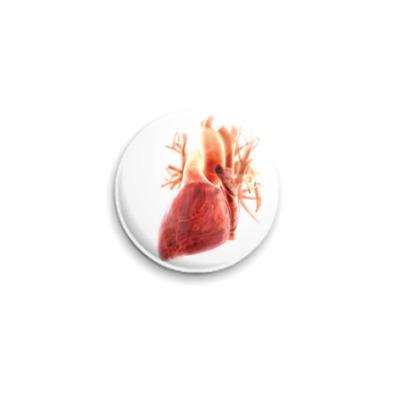 Значок 25мм  Anatomy - сердце