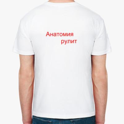 'Анатомия'
