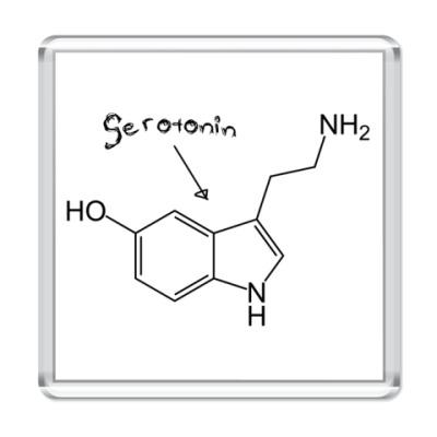 Магнит Sertonin