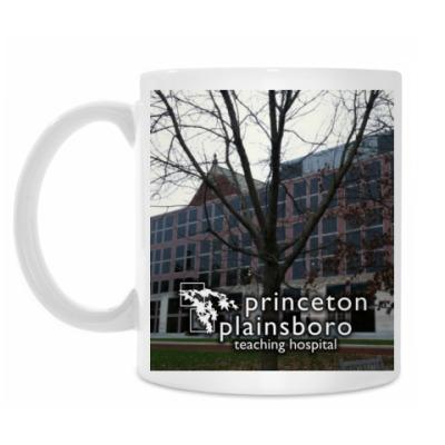 Кружка Princeton plainsboro