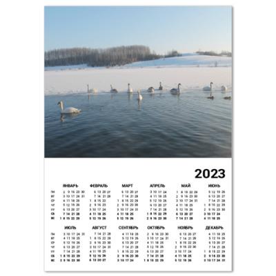 Календарь Лебеди Городищенского озера