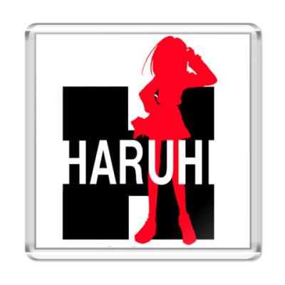 Магнит  Харуха