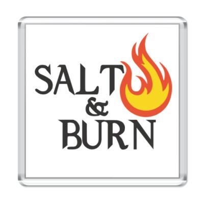 Магнит Salt & Burn