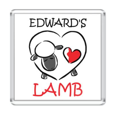 Магнит Edward's lamb