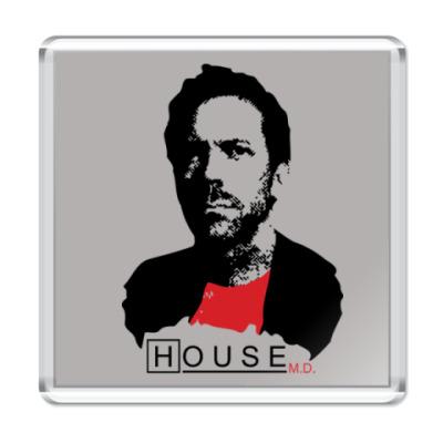 Магнит House leader