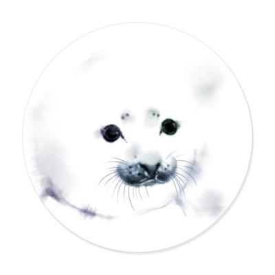 Виниловые наклейки Малыш тюлень