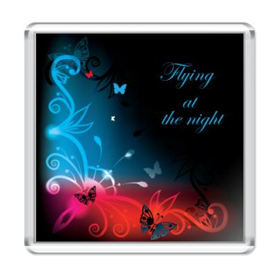 Магнит  Ночной полет