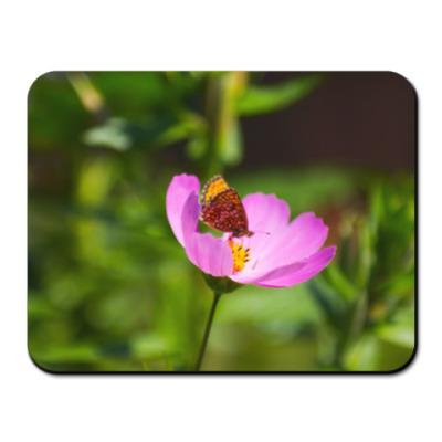 Коврик для мыши Садовая ромашка