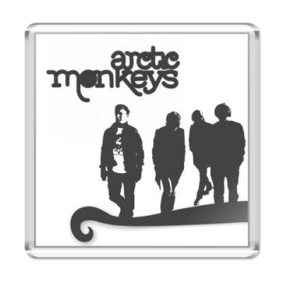 Магнит  Arctic Monkeys