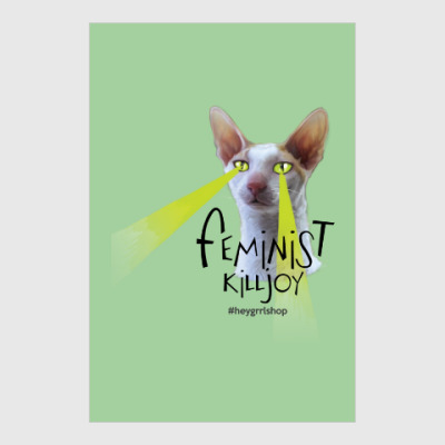 Постер Постер Feminist Killjoy