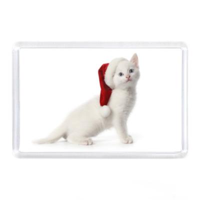 Магнит Новогодний котенок