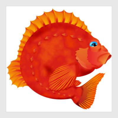 Постер Морской окунь