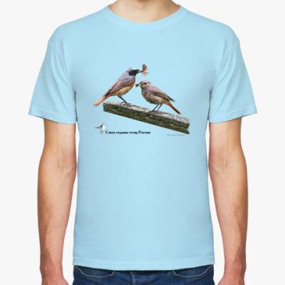 Футболка Обыкновенные горихвостки