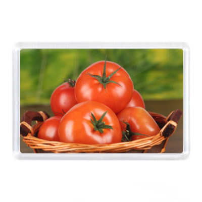 Магнит Помидоры, томаты