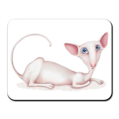 Коврик для мыши  Ориентал