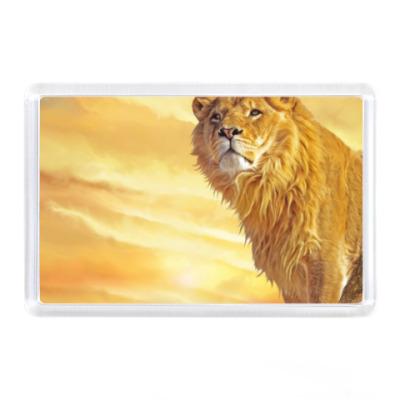 Магнит Царь зверей лев