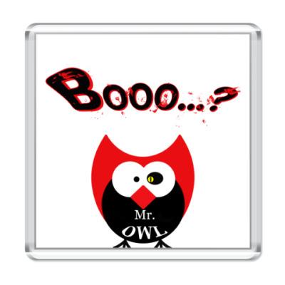Магнит Mr.OWL