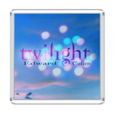 Магнит  Twilight