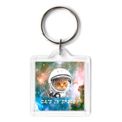 котейка космонавт