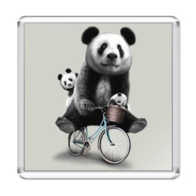 Магнит Панды на велосипеде