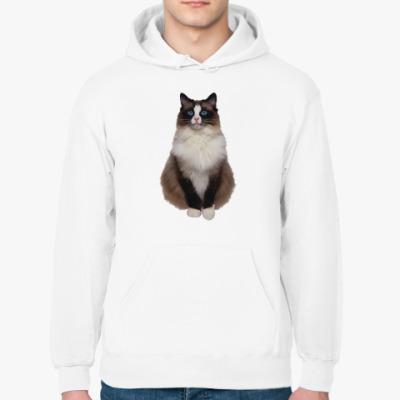 Толстовка худи Blue Eyed Cat