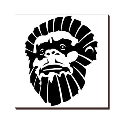 Лицо обезьяны
