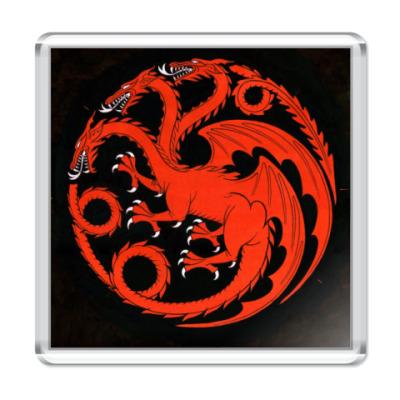 Магнит Таргариен (Targaryen)