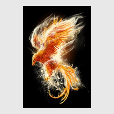 Постер Птица Феникс Fenix bird