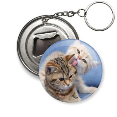 Брелок-открывашка котята