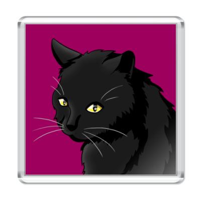 Магнит  'Черный кот'