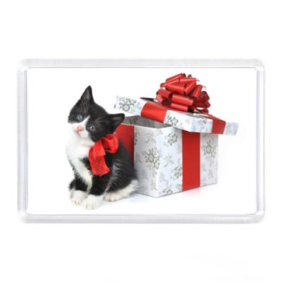 Поздравление с покупкой котенка 83