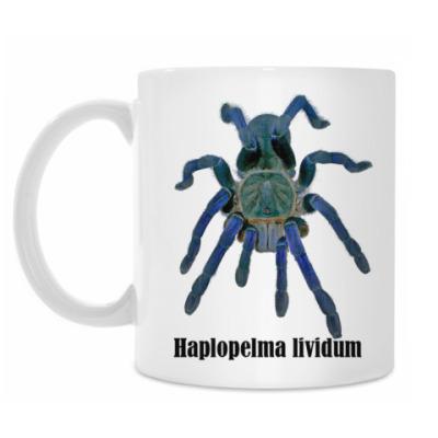 Кружка Lividum