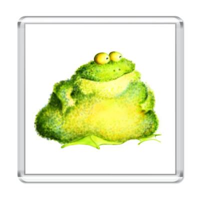 Магнит жаба