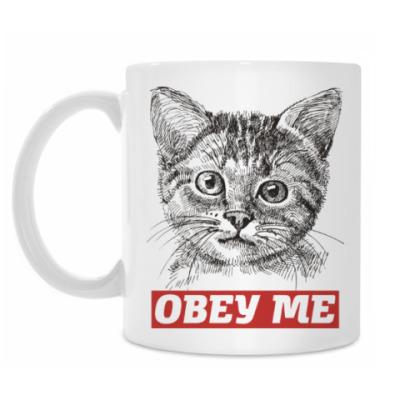 Кружка Obey. Кот. Кошка. Cat. Kitty.