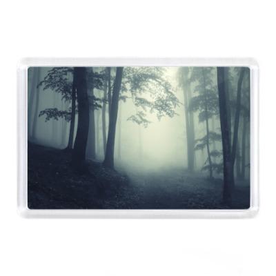 Магнит лес