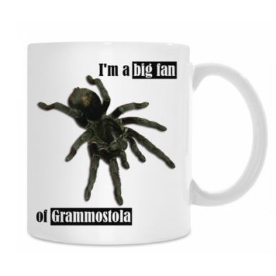 Кружка Grammos
