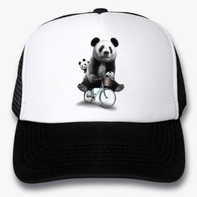 Кепка-тракер Панды на велосипеде