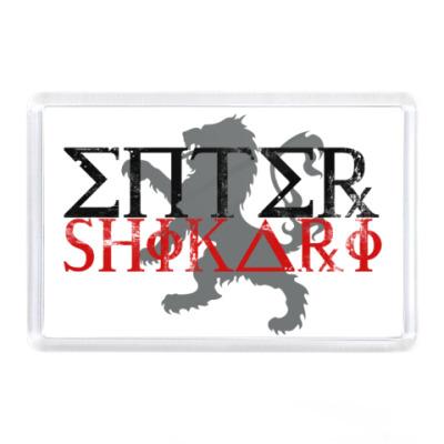 Магнит Enter Shikari