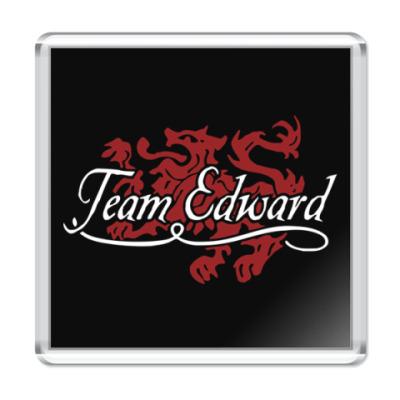 Магнит Team Edward
