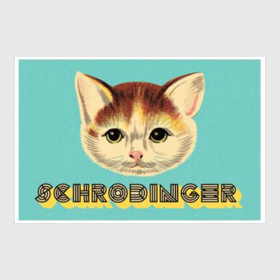 Постер Кот шредингера