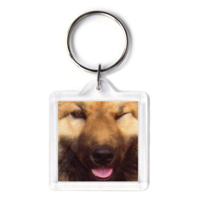 Собака Подмигивака