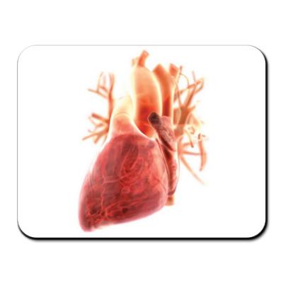 Коврик для мыши Коврик Anatomy - сердце