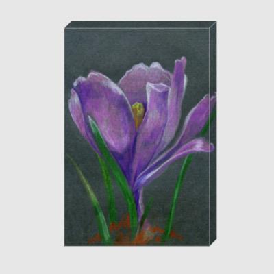 Холст Ручной рисунок цветок крокус
