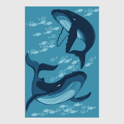 Постер киты
