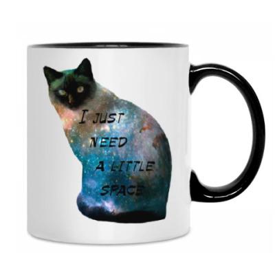 Котик космический