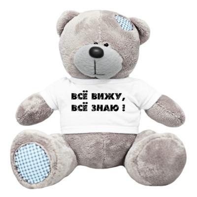 Плюшевый мишка Тедди Шпион