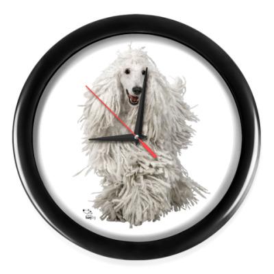 Настенные часы Собака