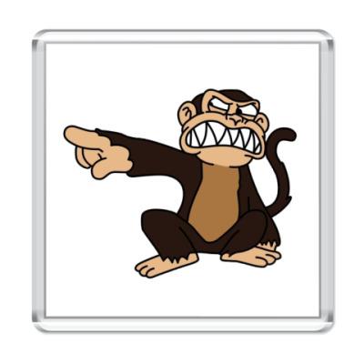 Магнит Angry Monkey