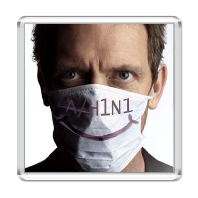 Магнит House A/H1N1