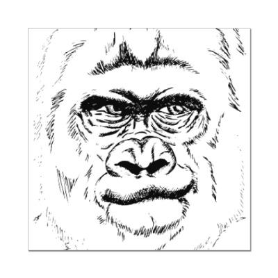 Наклейка (стикер) горилла
